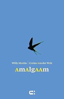 Amalgaam101