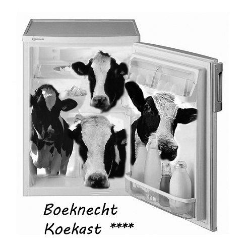 Boeknecht Koekast2